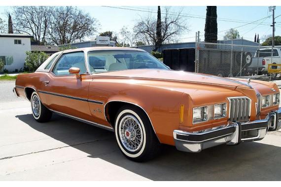 Pontiac 1979 Gold