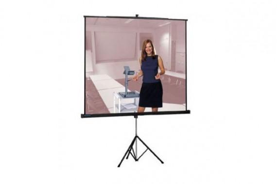 Проекционный экран Projecta Professional